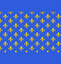 flag of saint-denis in seine-saint-denis france vector image