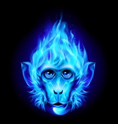 Monkey head in fire vector