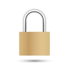 Realistic closed padlock vector image