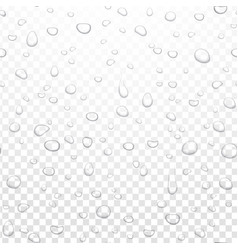 realistic water rain drops on alpha vector image