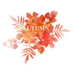 autumn orange leaves imitation watercolors vector image