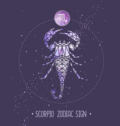 Card with astrology scorpio zodiac sign vector