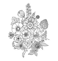 drawing vintage composition with flowers vector image