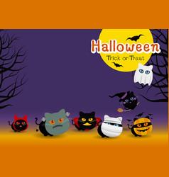 halloween cats costume banner design vector image