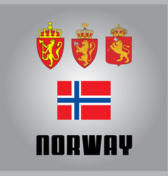official government elements of norway vector image
