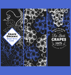 set of three grape banners grape berry frame vector image