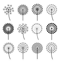 Set of stylized dandelions vector image vector image
