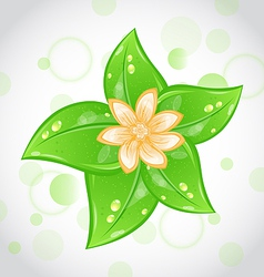 Cute eco background with green leaves and flower vector image vector image