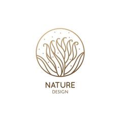 albuca concordiana linear logo corkscrew plant vector image
