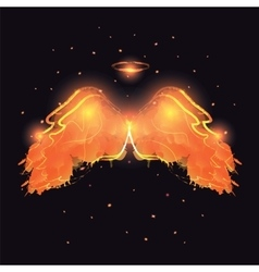 Angel nimbus and wings on black background vector