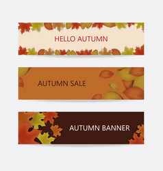 autumn banner decor with autumn maple leaves vector image