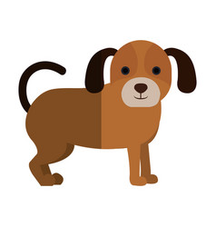 Cute dog pet icon vector