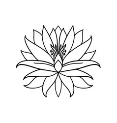 lotus flower icon on white background yoga symbol vector image