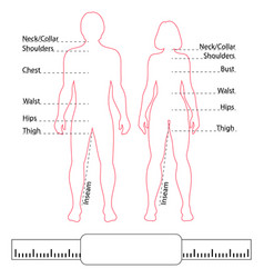Man woman contour bodies pointers and body parts vector