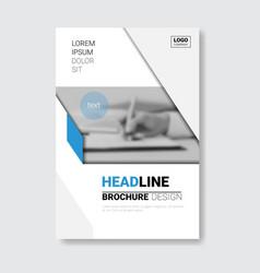 template design brochure annual report magazine vector image