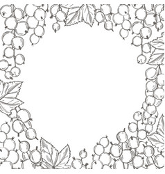 Vecor background with hand drawn currant sketch vector