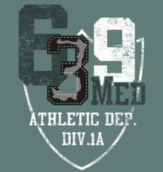 grunge athletic sports print vector image