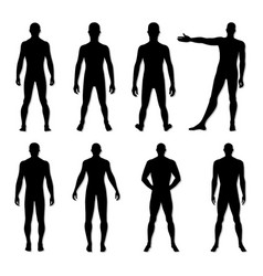 fashion man figure set vector image vector image