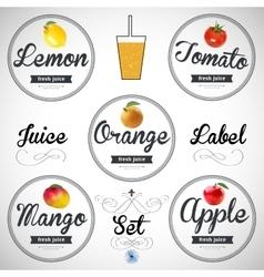 fruit juice Detailed label set vector image