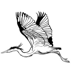 tattoo sketch flying stork vector image