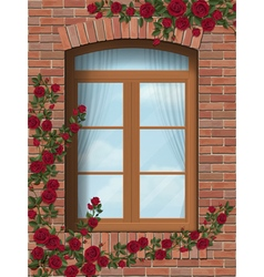 Climbing rose around arched window in brick wall vector
