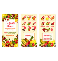 price menu for exotic fresh tropical fruits vector image