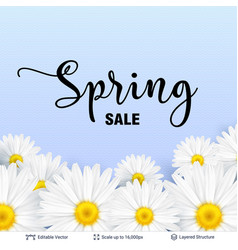 spring season flowers and sale text vector image