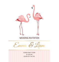exotic pink flamingo birds couple wedding invite vector image