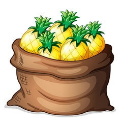 A sack of pineapples vector image
