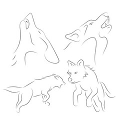 Black line wolfs on white background hand drawn vector
