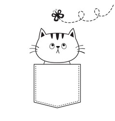Cat in pocket flying butterfly doodle linear vector