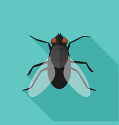 fly flat icon with long shadow vector image