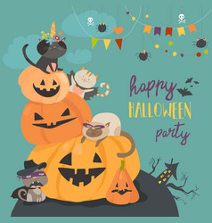 happy halloween with pumpkin and cute cats vector image