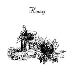 honey elements set hand drawn honey jar spoon vector image