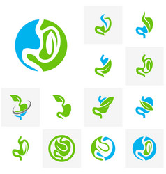 set of stomach with leaf logo design concept vector image