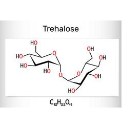 Trehalose tremalose carbohydrate molecule also vector