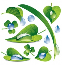 Water drops with a leafs vector