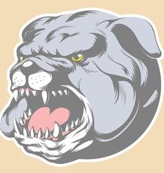 Bull Dog Head Cartoon vector image