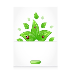 Leaves with ladybugs sticking out of the cut paper vector image