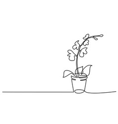 Blooming orchid in pot continuous one line drawing vector