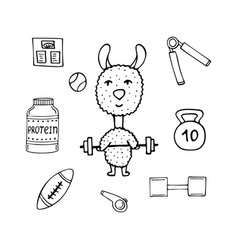 Funny lama the athlete with a bar and sports vector
