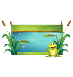 green frog sitting by the river vector image