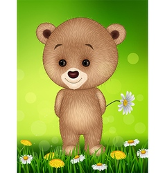 Little bear in summer season background vector