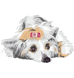 Portrait of a dog vector