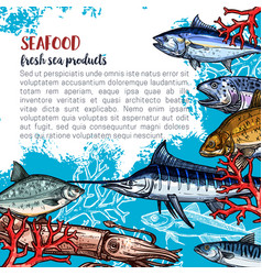 poster for seafood or fish food products vector image