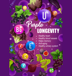 Purple diet longevity vitamins food nutrition vector