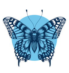 Tattoo butterfly in blue circleimmortality symbol vector