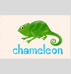 Wordcard with wild chameleon vector
