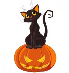 Halloween cat on pumpkin vector image