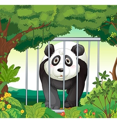 A forest with a panda inside a cage vector image
